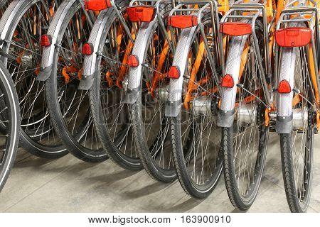 Rear Wheels And Mudguard Of Orange Bicycle