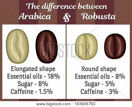 The visual difference between the coffee beans of Arabica and Robusta