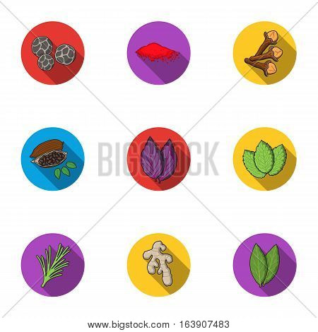 Herb and spices set icons in flat style. Big collection of herb and spices vector symbol stock