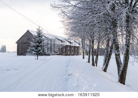 Snow Covered Countryside With Trees