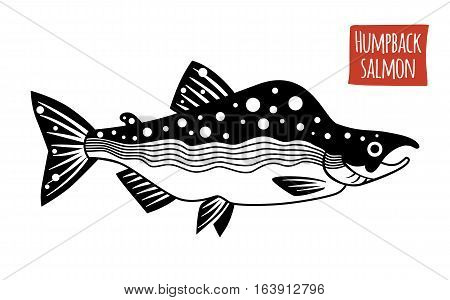 Humpback Salmon, black and white vector illustration, cartoon style