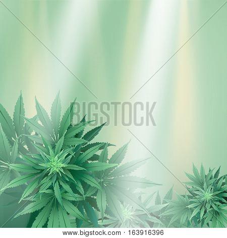Cannabisbckg2-10 [converted].ai