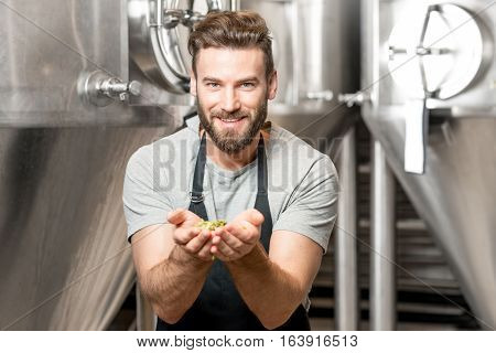 Portrait of a handsome brewer in uniform smelling hop at the manufacturing with metal tanks on the background