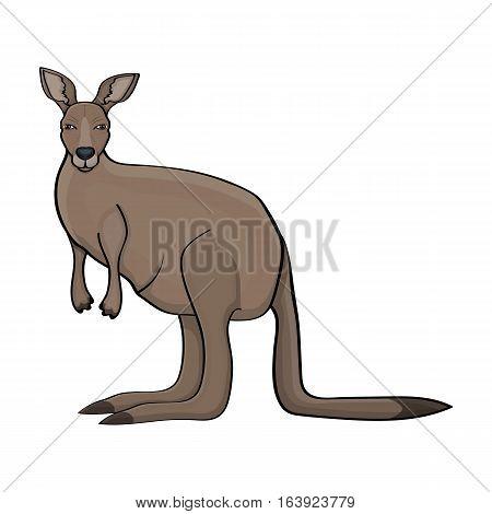 Kangaroo icon in cartoon design isolated on white background. Australia symbol stock vector illustration.