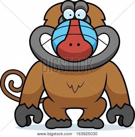 Cartoon Baboon Grin