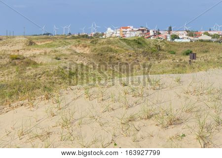 Dunes, Vegetation And Buildings At Cassino Beach