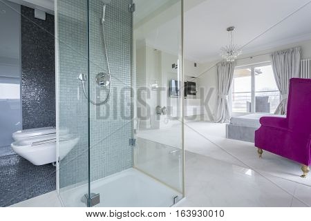 Bathroom With View Of Bedroom
