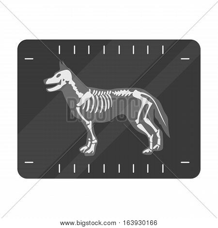 Dog x-ray icon in monochrome design isolated on white background. Veterinary clinic symbol stock vector illustration.