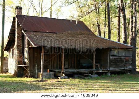 Old Shack In The Wood
