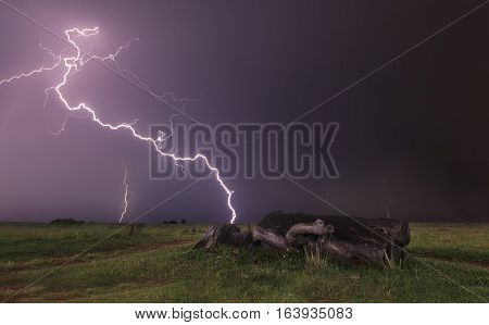 Landscape with lightning striking behind a dead tree trunk