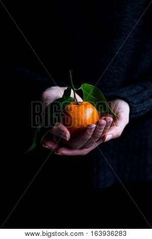 Female holding a Clementine with Green Leaves in Hands