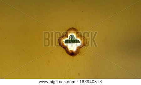 flower curve shape hole on the wall - garden view