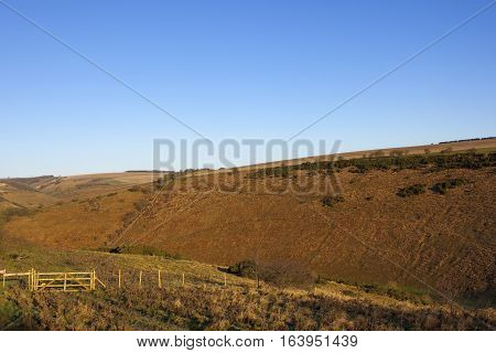 Moorland Valley