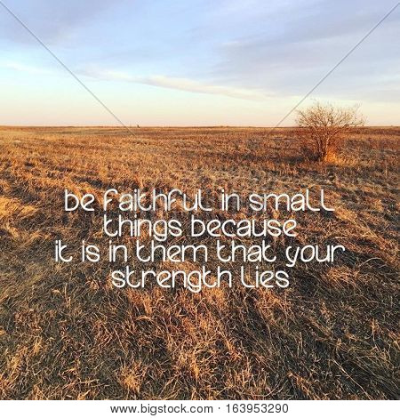 Inspirational quote on prairie grass field at sunset with isolated bush and sky background.  Instagram effects.