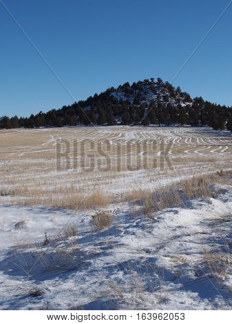 A snow covered hay field in Central Oregon that still shows the patterns from it's last cutting with a tree and snow covered butte in the background on a sunny winter day.