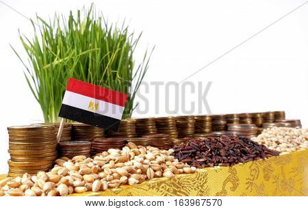 Egypt Flag Waving With Stack Of Money Coins And Piles Of Wheat And Rice Seeds