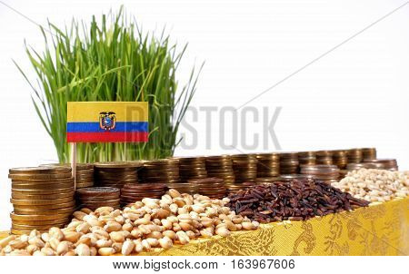 Ecuador Flag Waving With Stack Of Money Coins And Piles Of Wheat And Rice Seeds