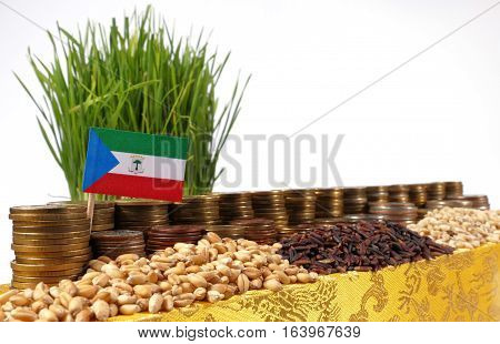 Equatorial Guinea Flag Waving With Stack Of Money Coins And Piles Of Wheat And Rice Seeds