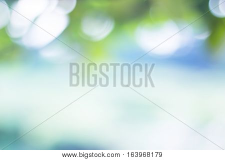 Nature blurred light abstract background / Natural outdoors bokeh background, Blurred forest background