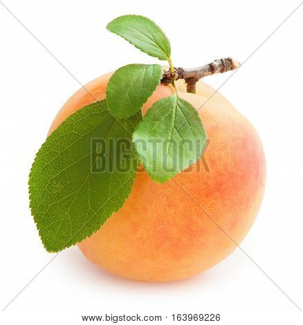 Peach. Fresh peach with green leaf isolated on white background
