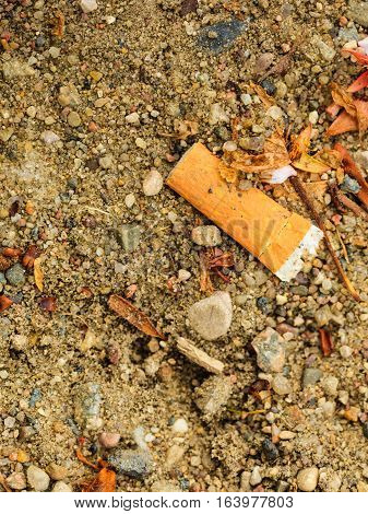Addiction health problems nicotine smoking concept. Detailed closeup of burnt cigarette filter lying on ground.