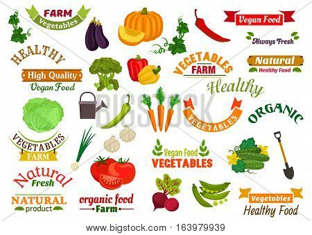 Vegetables vegetarian emblems, ribbons set. Fresh natural farm organic vegetables and greens pumpkin, carrot, pepper, dill, peas, radish, beet, cabbage, eggplant, cucumber. Isolated icons for grocery store, vegan product label sticker