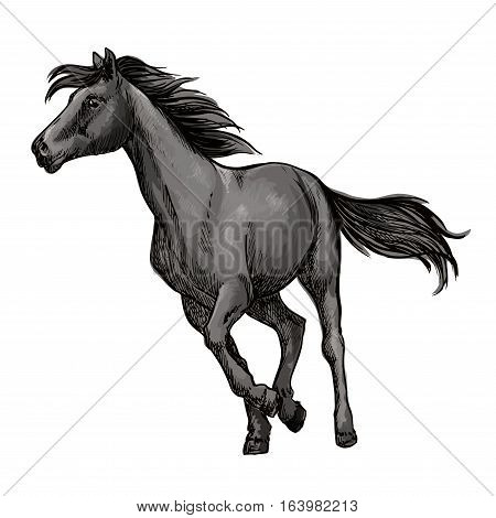 White horse running freely. Wild mustang stallion gallops against wind with waving mane and tail. Vector portrait