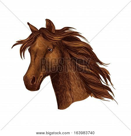 Arabian brown horse race sport emblem. Powerful bay purebred mustang stallion trotter. Equine mare with wavy mane