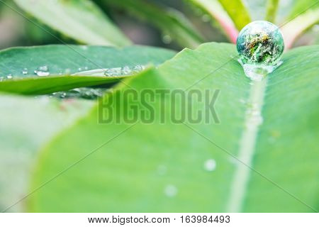 abstract image of small world in nature, Environment Conservative concept