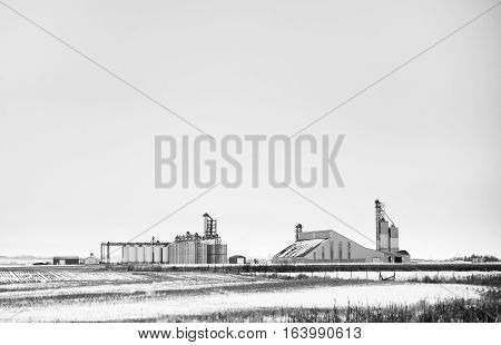 Steel grain storage bins and large building at industrial agricultural plant site in black and white rural landscape