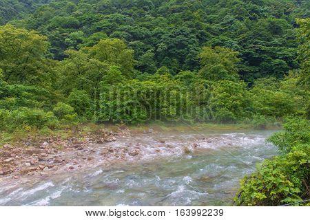 Waterfall And Bridge In Golden Whip Stream At Zhangjiajie National Forest Park, Hunan, China