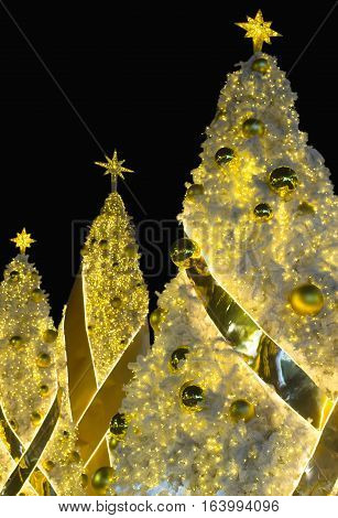 Christmas holiday festival with chritmas tree decoration