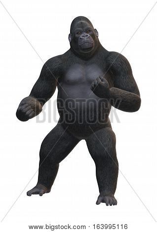 3D Rendering Gorilla On White