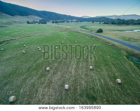 Hay Bales Scattered On Green Field.