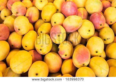 A large amount of colourful mangoes at a market