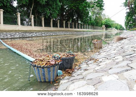 Staff leaves in water, waste water pollution garbage floating on the surface of the water. Water pollution with dirt and leaves tree garbage floating on the surface of the river