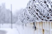 sharp barbed wire fence on a cold day in winter poster