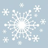 Vector Snowflakes with light blue background poster
