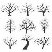 Dead tree silhouettes. Dying black scary trees forest vector illustration. Natural dying old tree of set poster