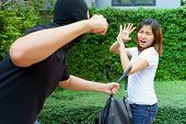 Thief fighting and stealing handbag from screaming asian woman at park poster