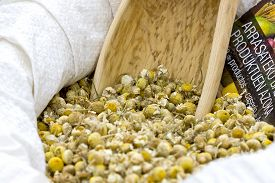 Closeup image of a basket full of dry chamomile flowers.