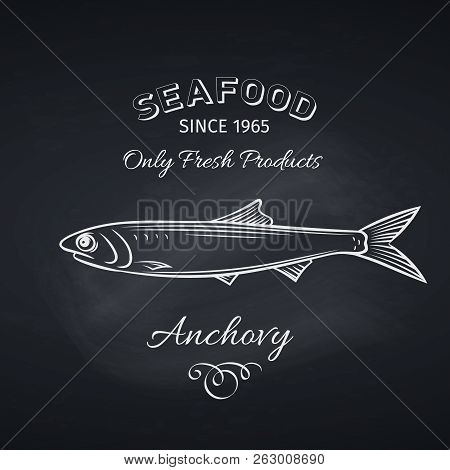 Hand Drawn Anchovy Fish On Chalkboard. Seafood Icon Menu Restaurant Design. Engraving Style. Vector
