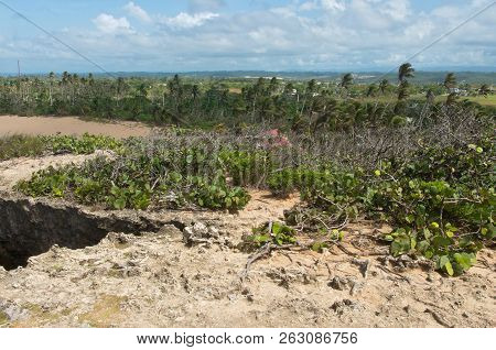 Coastal Plains And Rugged Landscape Of Punta Las Tunas