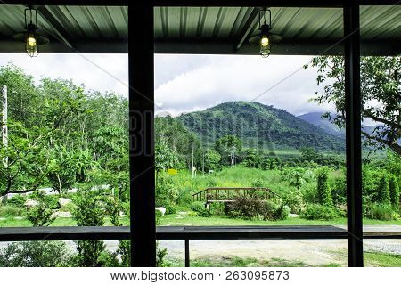 Landscape View From The Window For Relaxing Time, Green Nature Beside The Window, Coffee Bar, Peacef