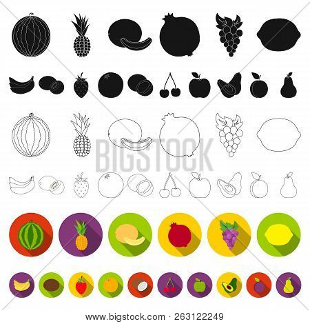 Different Fruits Flat Icons In Set Collection For Design. Fruits And Vitamins Vector Symbol Stock We