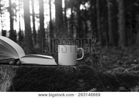 Lifestyle Image With A Cup Of Steamy Hot Coffee And An Open Book, On A Cut Tree Root, Outside In A F
