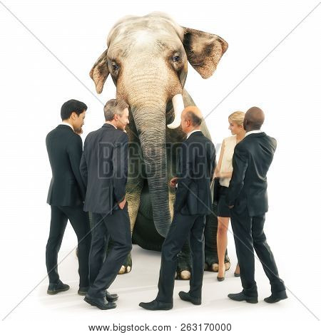 Elephant In The Room Out Of Place, Individuality Or Wisdom Concept. Business Men And Women In A Grou