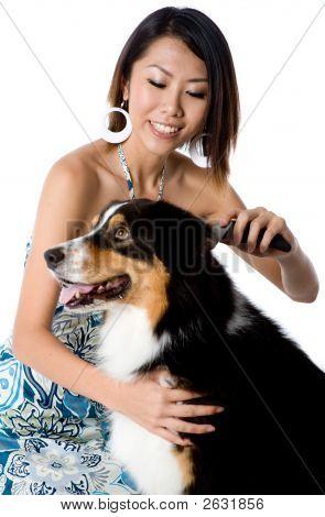 Preparación del perro