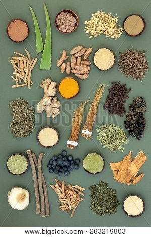 Adaptogen food collection with herbs, spices, fruit and supplement powders. Used in herbal medicine to help the body resist the damaging effect of stress and restore normal physiological functioning. poster