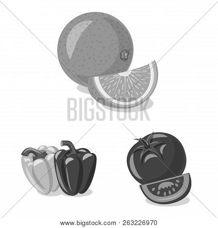 Vector Illustration Of Vegetable And Fruit Sign. Set Of Vegetable And Vegetarian Stock Vector Illust